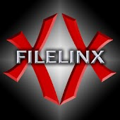 FileLinx 3G Print or Transfer