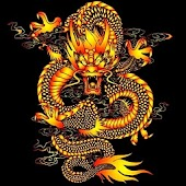 3D lucky dragon9