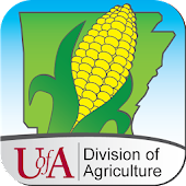 Corn Advisor