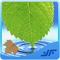 Medicinal Plants & Herbs icon