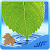 Medicinal Plants & Herbs file APK for Gaming PC/PS3/PS4 Smart TV