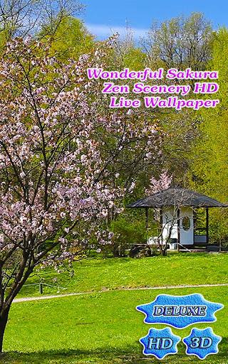 Wonderful Sakura Zen Scenery