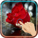 Magic Touch : Love Rose icon