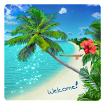 Beach Live Wallpaper 2.5.0 Apk
