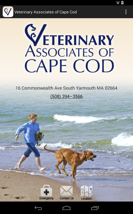 Cape Cod Veterinary Associates- screenshot