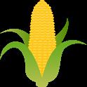 ચોમાસું મકાઈની વૈજ્ઞાનિક ખેતી icon