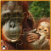 Animals Jigsaw Puzzle II