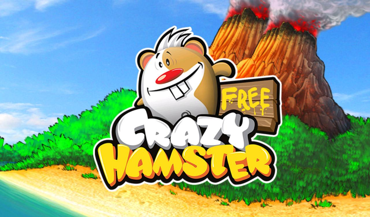 Crazy Hamster Free - screenshot