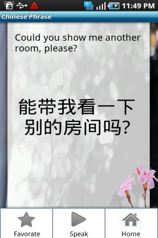 Chinese Phrase Book - screenshot