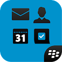 Secure Work Space for BES12 icon