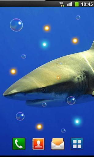 Great Shark live wallpaper