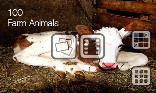 100种农场动物