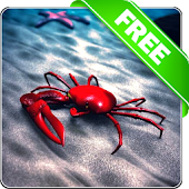 Beach Crab Free live wallpaper