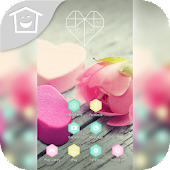 Pink Rose Romance Love Theme