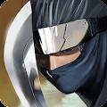 Ninja Revenge download