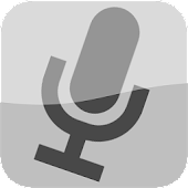 Voice Assistant (Italiano)