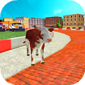 Animal Racing : Cow