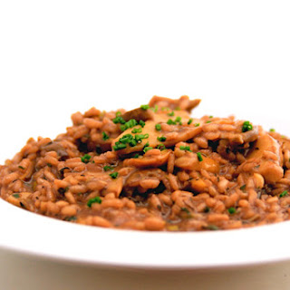 Red Wine and Porcini Risotto.