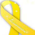 Support Our Troops LWP Ribbon