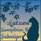 Katzen Samtpfoten&Stubentiger