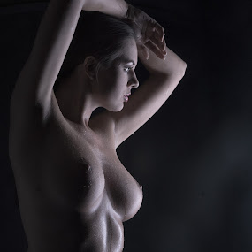 Beauty by Tatjana GR0B - Nudes & Boudoir Artistic Nude (  )