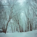 Snowfall Live Wallpaper Xperia icon