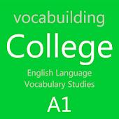 Anadolu Liseleri İngilizce A1