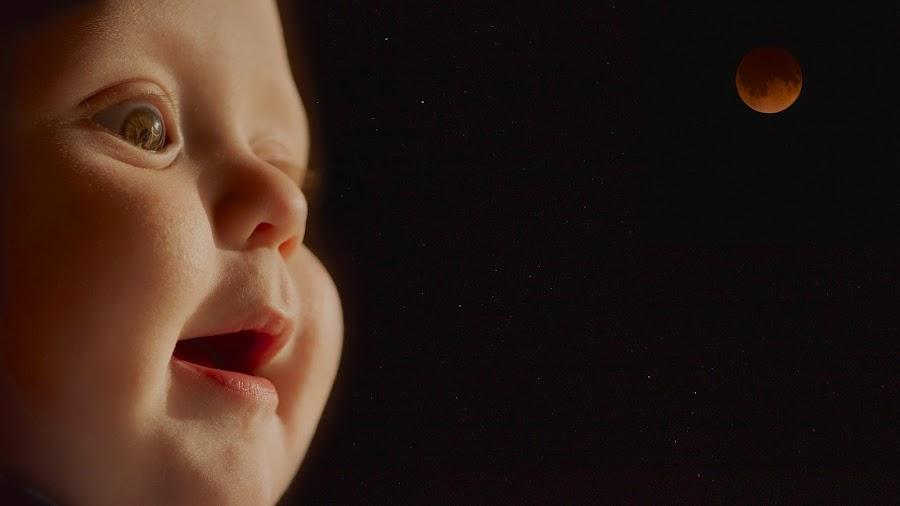 Anything's Possible by Dale Kemp - Babies & Children Child Portraits ( child, blood moon, gaze, black, portrait,  )