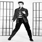 History of Elvis Presley icon