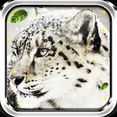Snow Leopard Sounds HD LWP