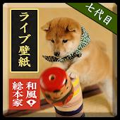 和風総本家/七代目豆助(だるま落とし)ライブ壁紙