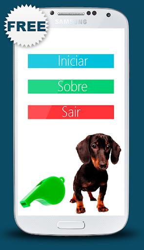 Apito para cão Digital 2014