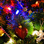 Christmas tree by Richard Ryan - Public Holidays Christmas ( lights, colourful, xmas, christmas,  )