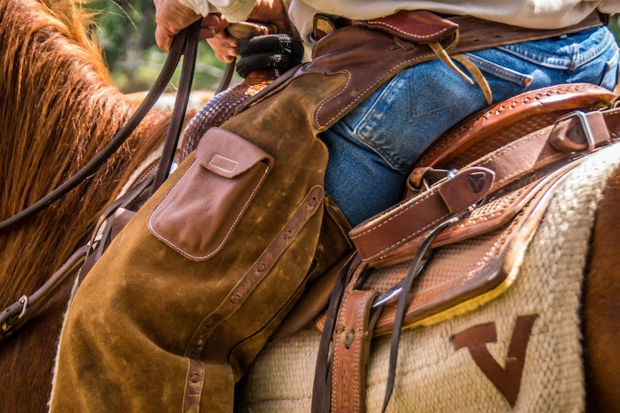 Saddle and Rider by Alice Burghart - Sports & Fitness Rodeo/Bull Riding (  )
