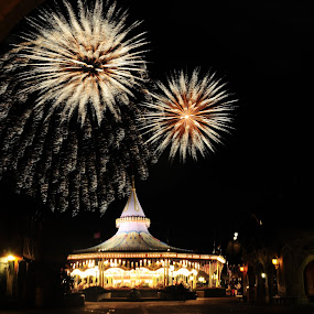 wishes by Brett Kurtz - City,  Street & Park  Amusement Parks ( wishes, walt, nola, by, show, disney, fantasyland, charming, photos, magic, kingdom, prince, florida, orlando, fireworks, carousel, world )
