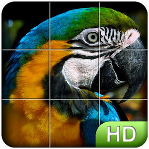Tile Puzzle: Birds for PC and MAC
