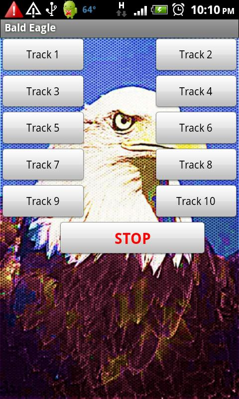 Bald Eagles American Pride - screenshot