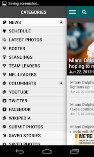 Dolphins Football - screenshot thumbnail