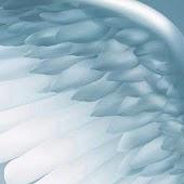 Chiama gli Angeli