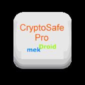 CryptoSafe Pro