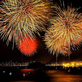 New In, Old Out by Darrell Champlin - Abstract Fire & Fireworks ( fireworks, fire, new year, dipawali, diwali, 2014,  )