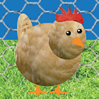 Chicken Pet Game icon