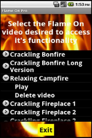 Fireplaces and Campfires Pro- screenshot