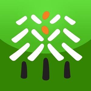 국립자연휴양림 아이콘