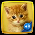 ★ Tier Quiz Kinder ★ icon