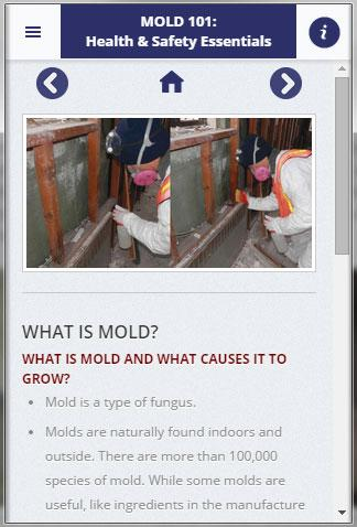 Mold 101: Health Safety App