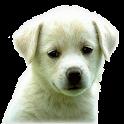 Juegos de Animales logo