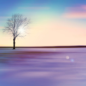 tree on snowy field by Dominik Konjedic - Digital Art Abstract ( field, colour, sky, tree, slovenia, snow, snowy )
