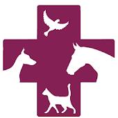 Hampden Veterinary Hospital