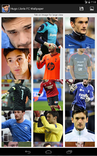 Hugo Lloris FC Wallpaper